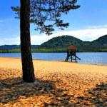 Hamr-beach