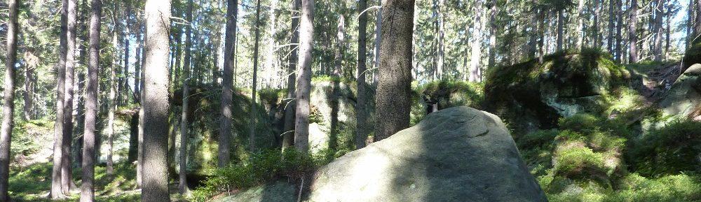 Bohemia Orienteering 26.-30.7.2017